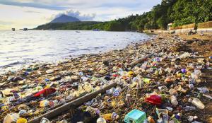 الحل الاقتصاد المدور إلى القمامة البلاستيكية البحرية